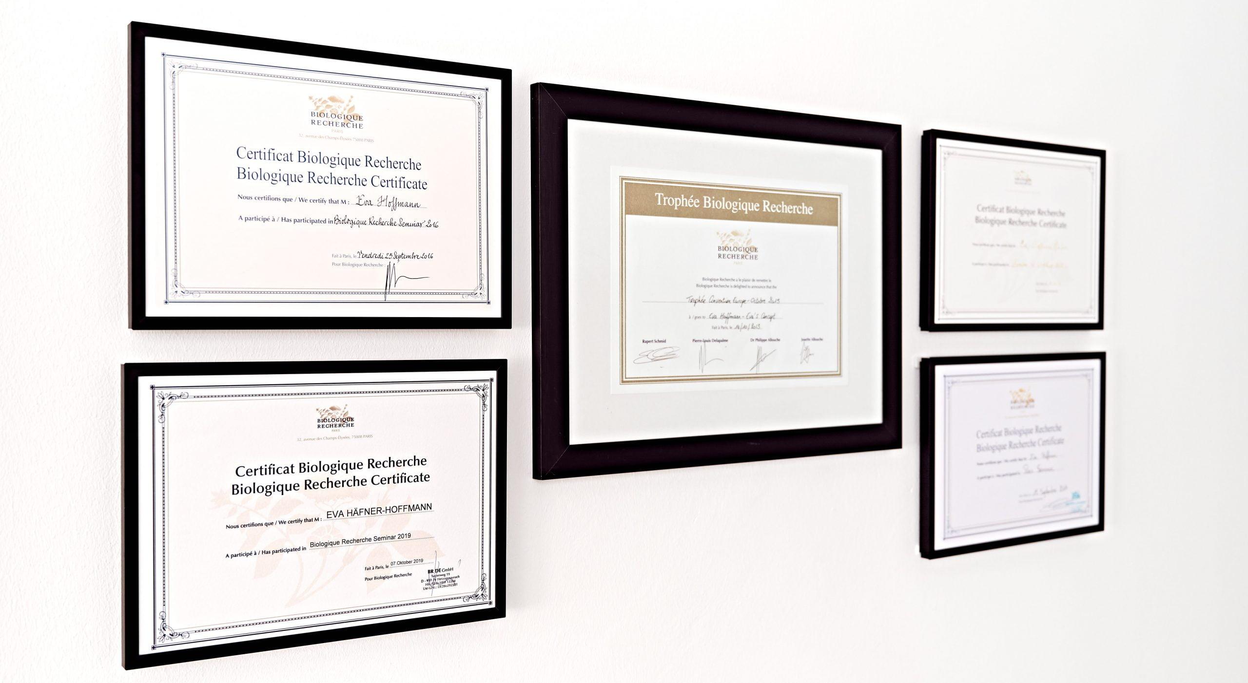 Auszeichnungen und Zertifikate von evas concept